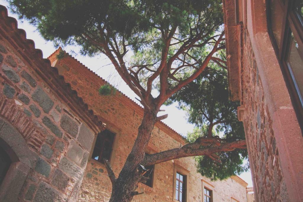 Les Pergamon Butik Hotel - Bergama - İzmir - Türkiye Fotograf: Onur Yüksel
