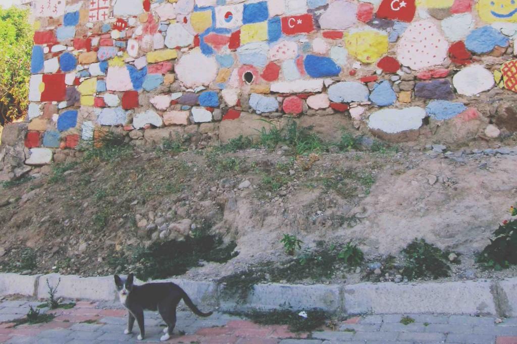 Bergama - İzmir - Türkiye Fotoğraf: Onur Yüksel