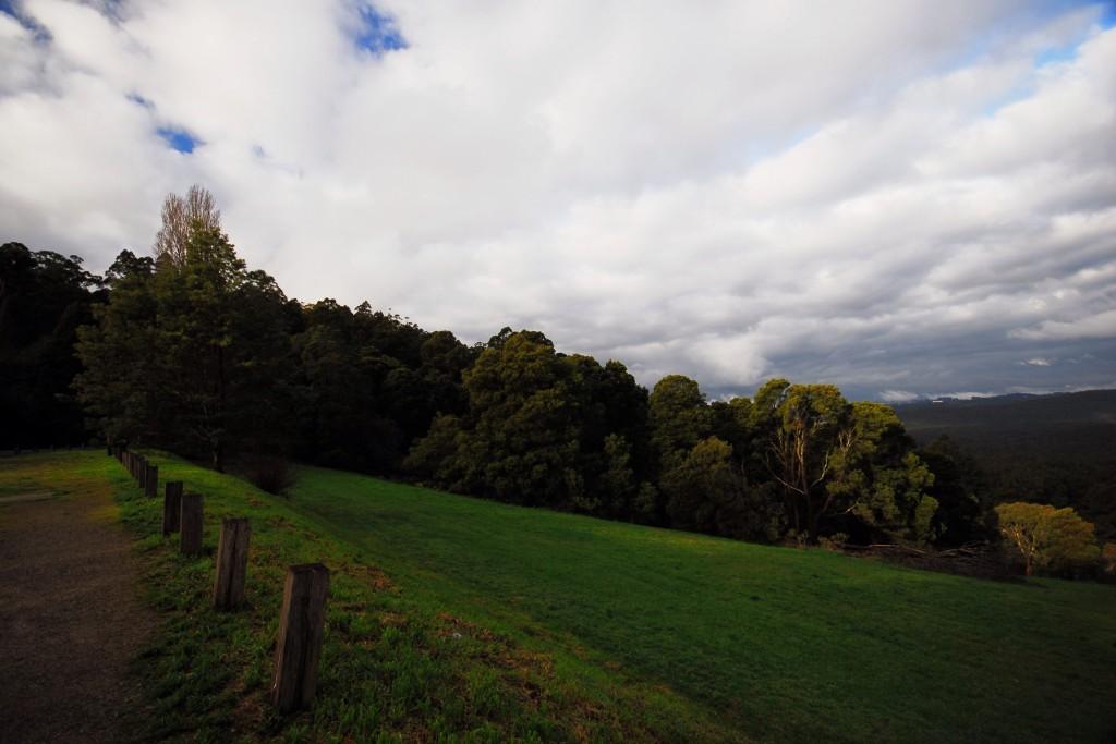 Dandenong Ranges - Victoria - Avustralya  Fotoğraf : Oylum Yüksel