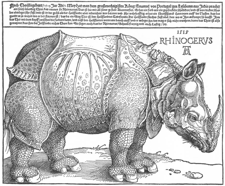The Rhinoceros (1515), Albrecht Dürer