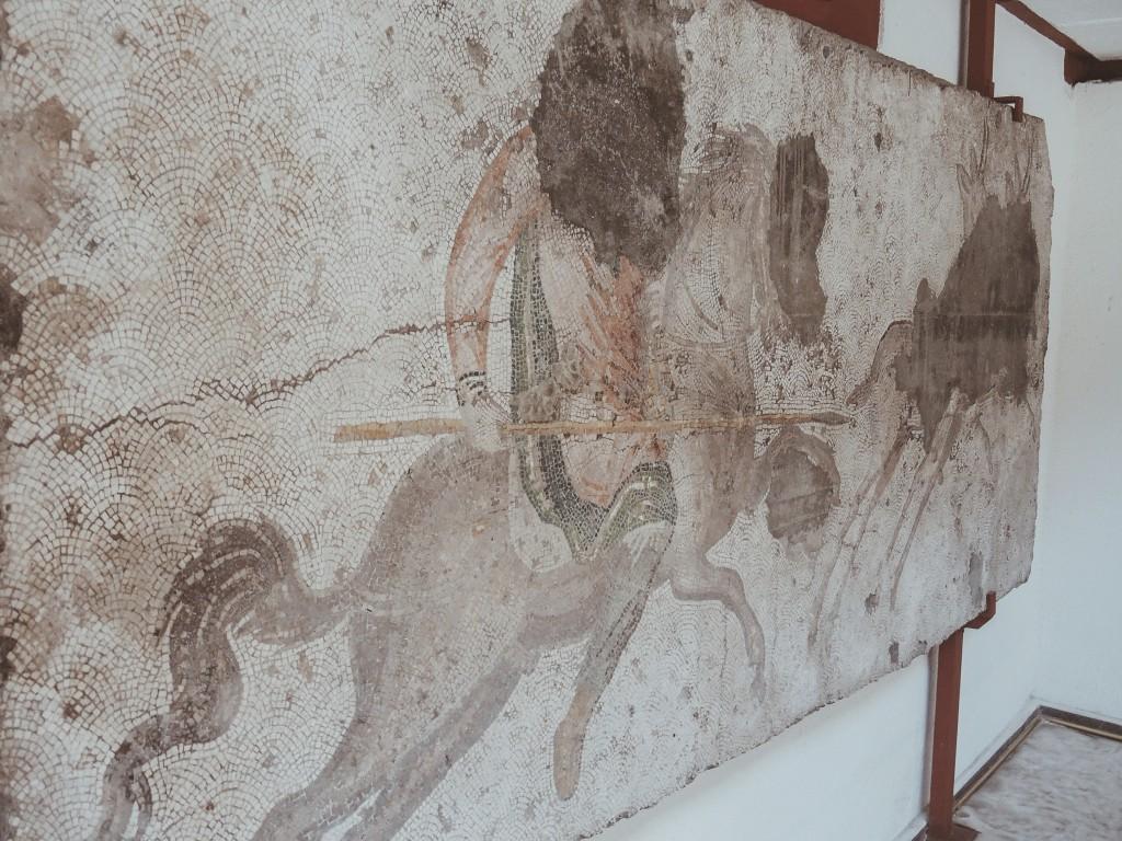 Büyük-saray-mozaikleri-müzesi-istanbul-baya-iyi-1
