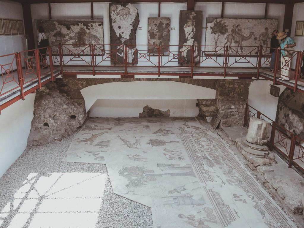 Büyük-saray-mozaikleri-müzesi-istanbul-baya-iyi-6