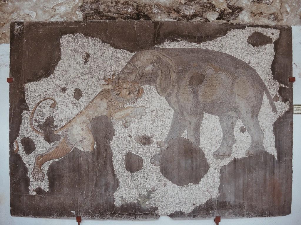 Büyük-saray-mozaikleri-müzesi-istanbul-baya-iyi-8