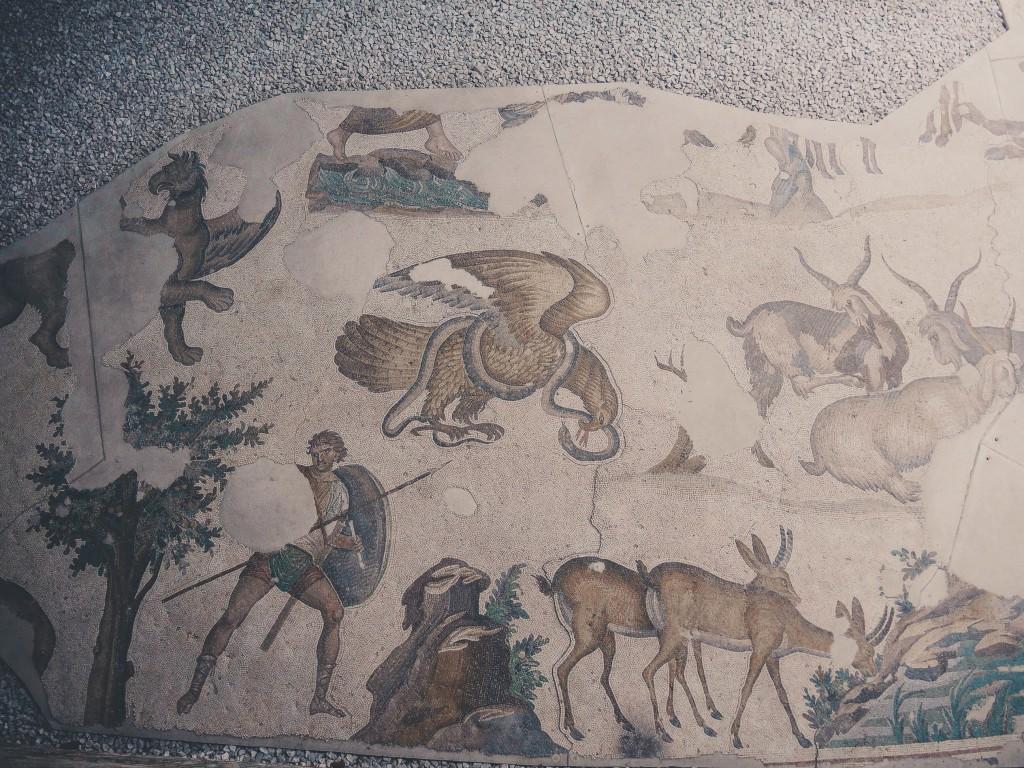 Büyük-saray-mozaikleri-müzesi-istanbul-baya-iyi-10