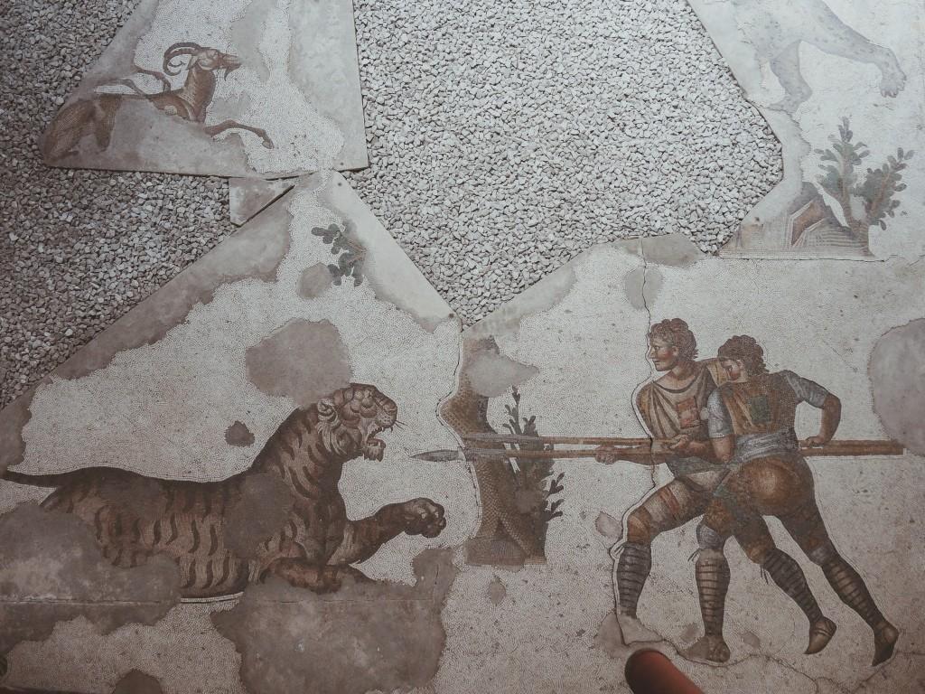 Büyük-saray-mozaikleri-müzesi-istanbul-baya-iyi-11
