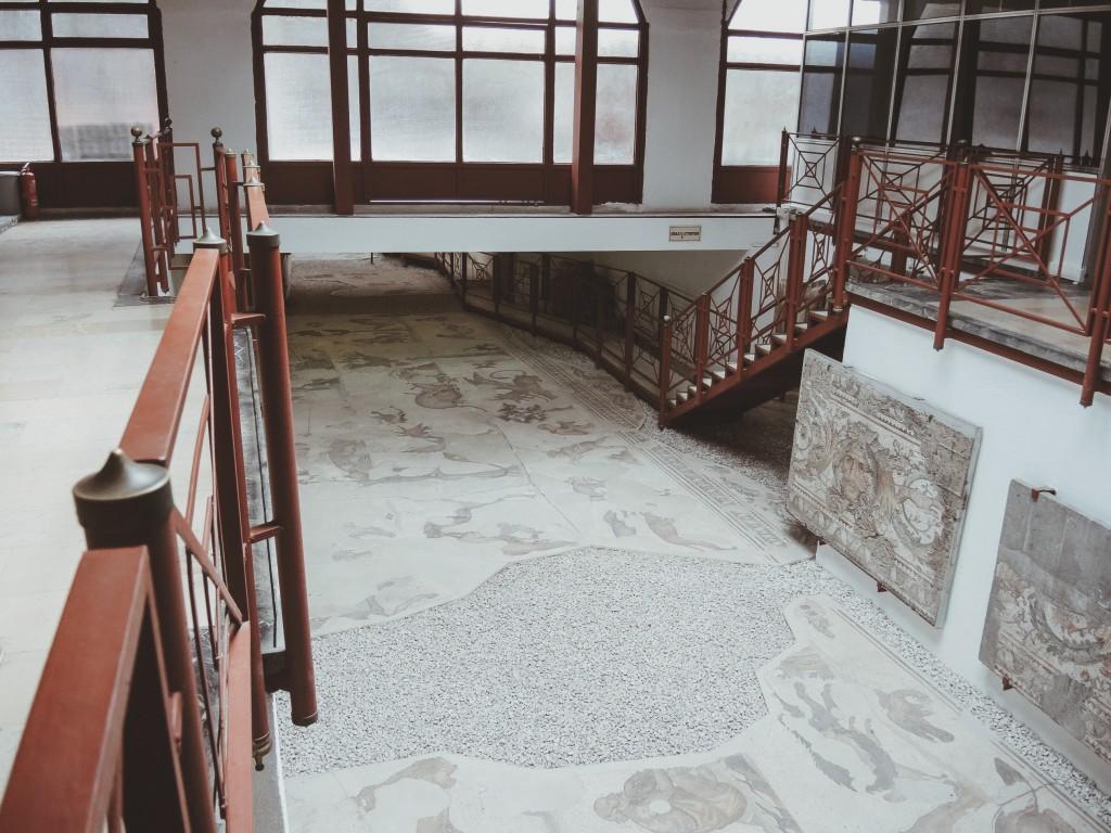 Büyük-saray-mozaikleri-müzesi-istanbul-baya-iyi-12