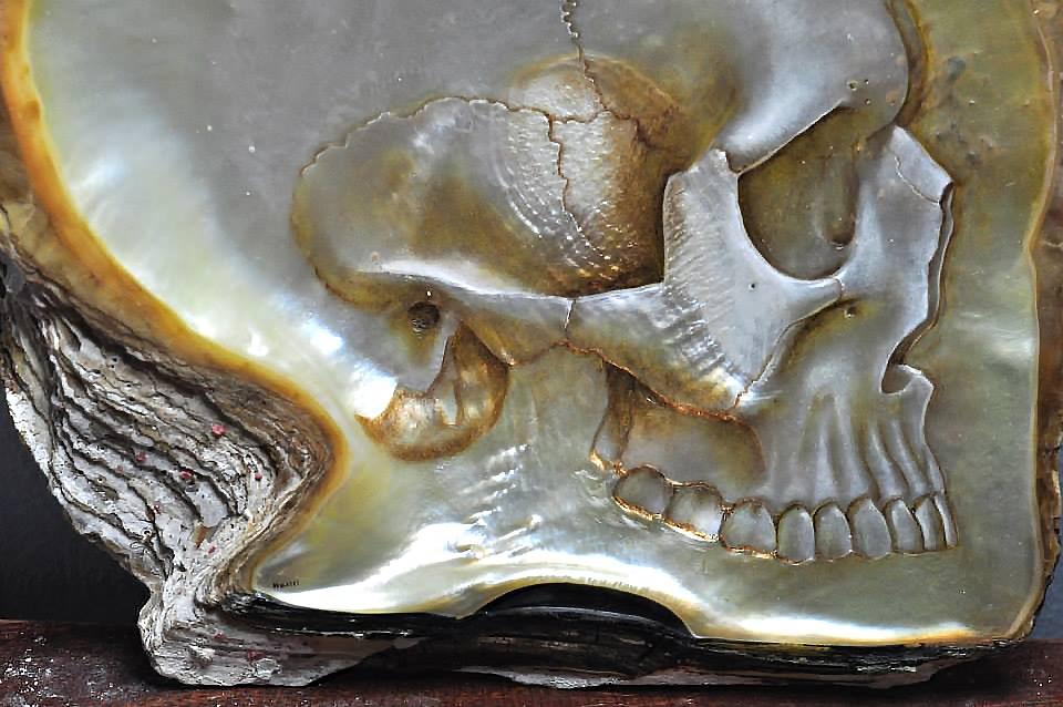Gregor-Halili-istiridye-kurukafa-skull-baya-iyi-5