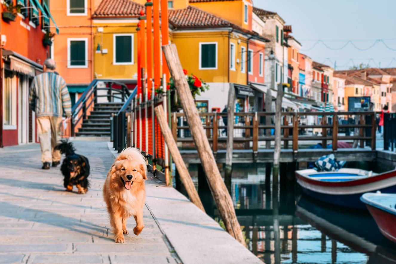Burano-Adası-Venedik-28