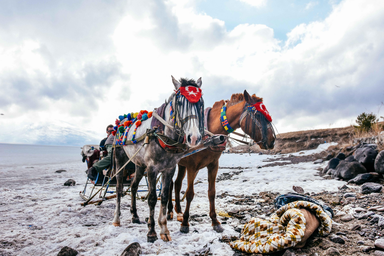 Kars-Erzurum-Dogu-Ekspresi-Seyahati-14
