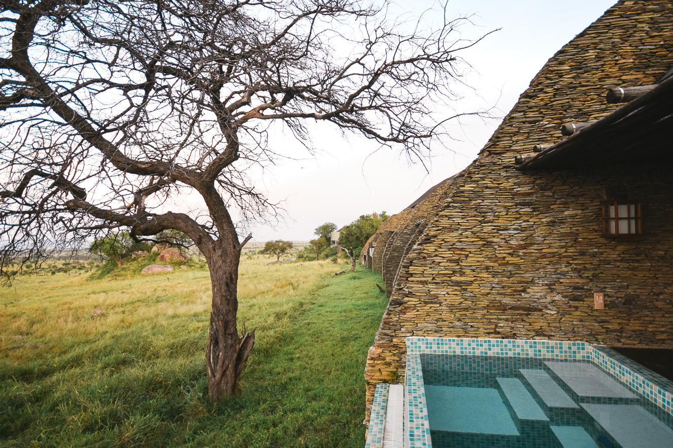 Four Season Serengeti Safari Lodge Tanzanya