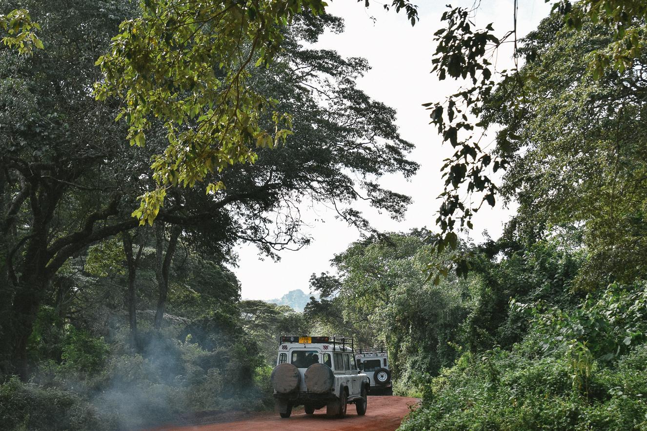 Tanzanya-Serengeti-Safari-2