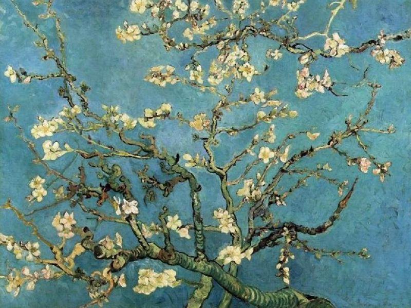 Almond Blossom, Vincent Van Gogh, Van Gogh Museum, Amsterdam, Hollanda